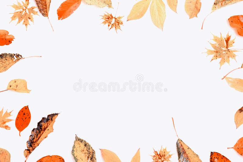 De samenstelling van de herfst De vaas met droog doorbladert, appel en kaarsen bij het ontslaan Kader van de herfst droge multi-c royalty-vrije stock fotografie
