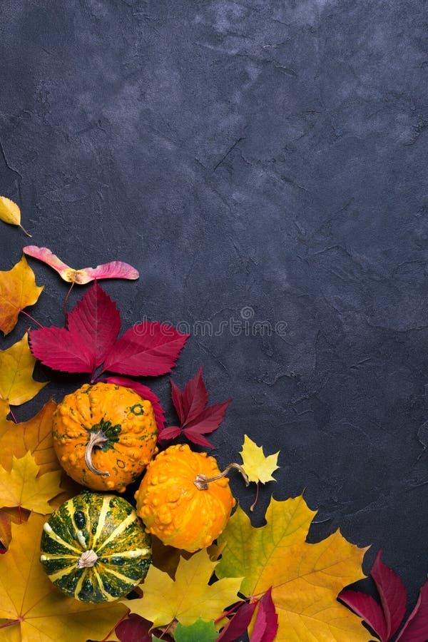 De samenstelling van de herfst De vaas met droog doorbladert, appel en kaarsen bij het ontslaan Kader van verschillende veelkleur stock fotografie