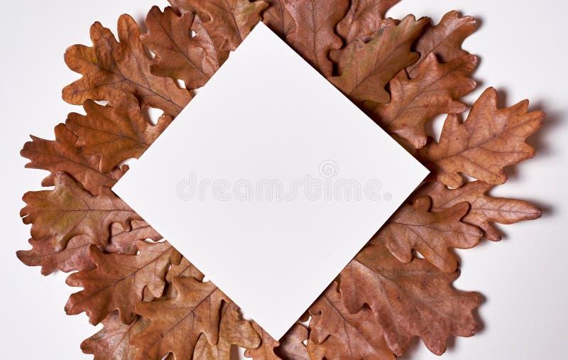De samenstelling van de herfst De vaas met droog doorbladert, appel en kaarsen bij het ontslaan Kroonkader van leeg document, de  royalty-vrije stock foto's
