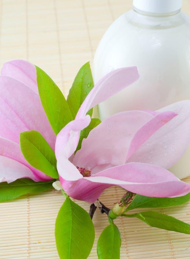 De samenstelling van het kuuroord met magnolia stock foto