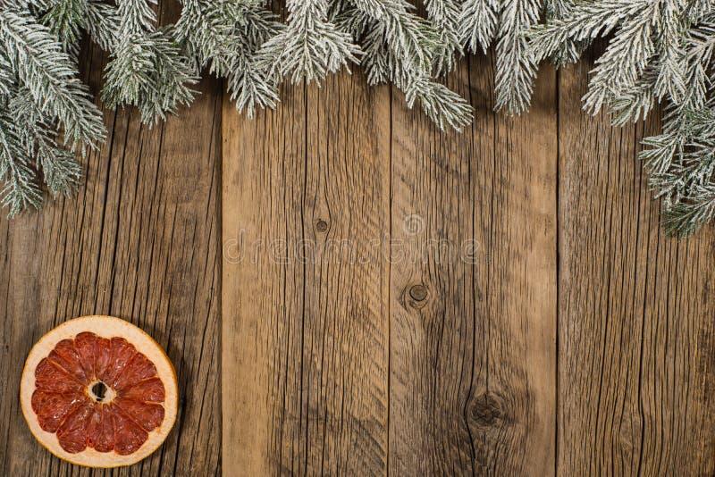 De samenstelling van Kerstmis Nette takken met droge grapefruit op o royalty-vrije stock afbeelding