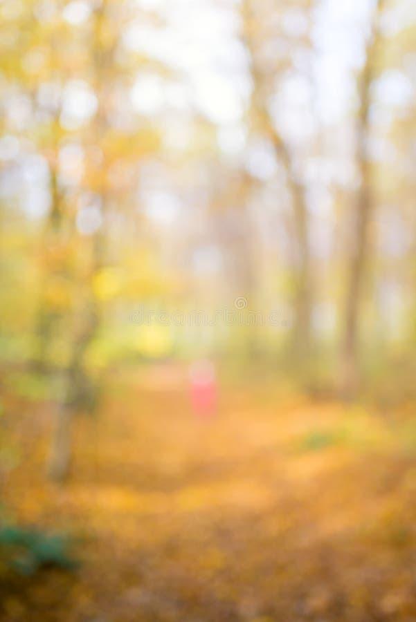 De samenvatting unfocused en zachte achtergrond voor ontwerp Weg in het Hout Magisch de herfstbos met onduidelijk beeldtechniek royalty-vrije stock foto