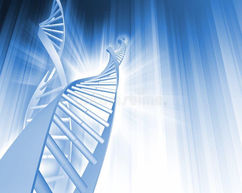 De Samenvatting van de DNA- Bundel stock illustratie