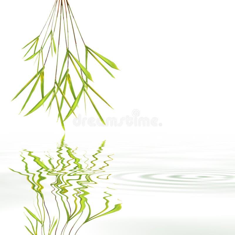 De Samenvatting van het Gras van het Blad van het bamboe royalty-vrije illustratie