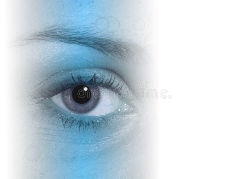 De samenvatting van het oog royalty-vrije illustratie
