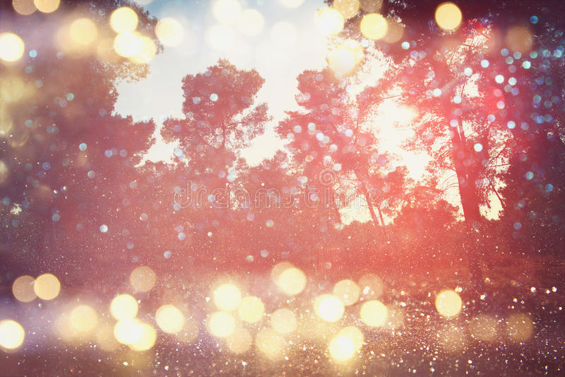 De samenvatting vertroebelde dromerig hout en schittert bokeh lichten stock afbeeldingen