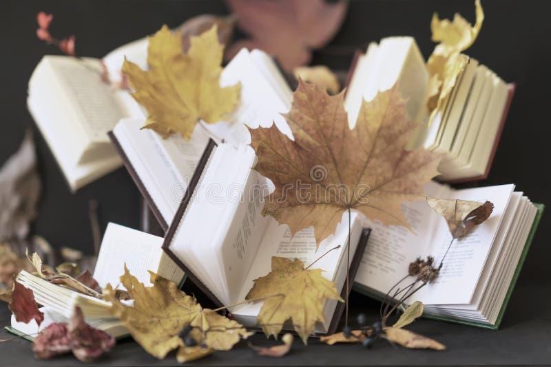 De samenvatting vertroebelde open boeken en de herfst gevallen bladeren, selectieve nadruk Uitstekend, rustiek stilleven De herfs stock foto