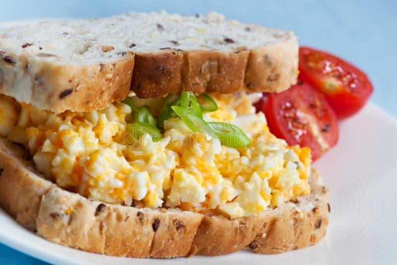 De Sandwich van de Salade van het ei stock fotografie