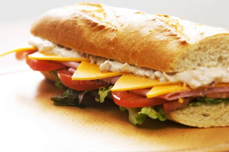 De sandwich van de tonijn royalty-vrije stock fotografie
