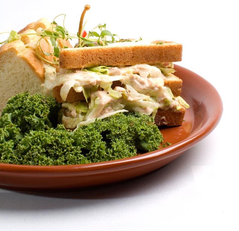 De Sandwich van de Vissen van de tonijn stock afbeeldingen