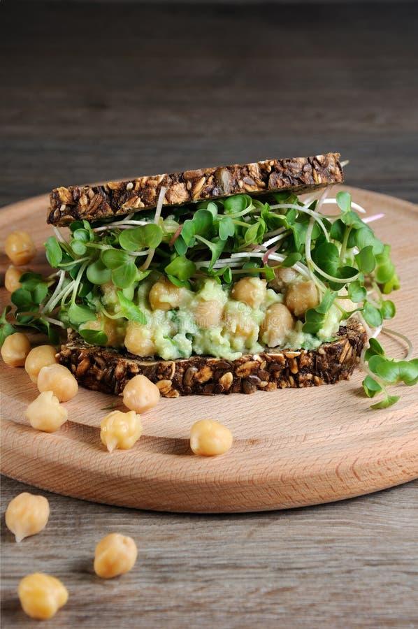 De Sandwich van de kikkererwtenavocado met radijsspruiten royalty-vrije stock foto
