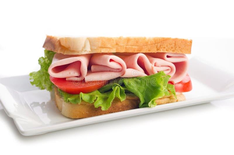 De sandwich van Turkije stock foto