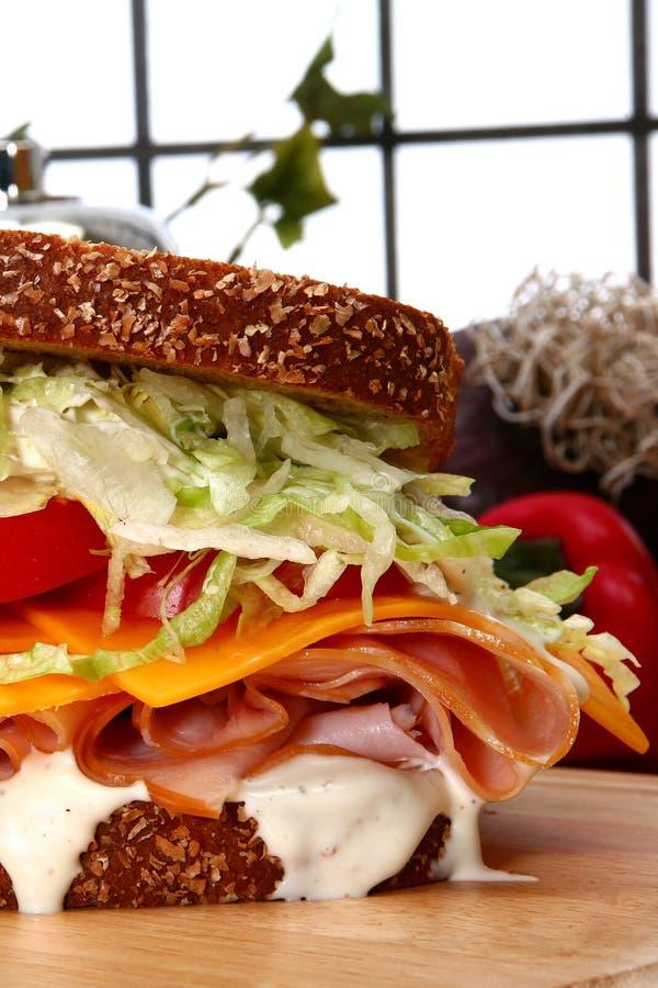 De Sandwich Van Turkije Stock Afbeeldingen