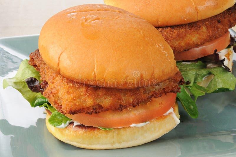 De sandwich van vissen op een broodje stock foto