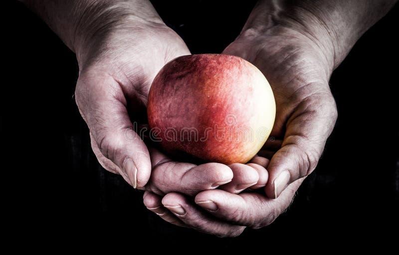 De sappige appel in handen van bejaarden, sluit omhoog gestemd royalty-vrije stock fotografie