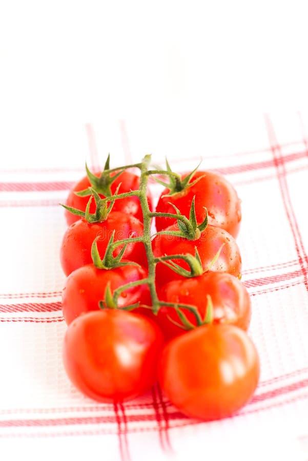 De sappige organische tomaten van de Kers stock afbeeldingen