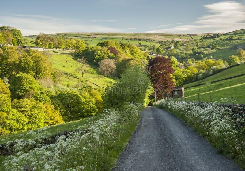 De scène van de de dallenzomer van Yorkshire stock foto's