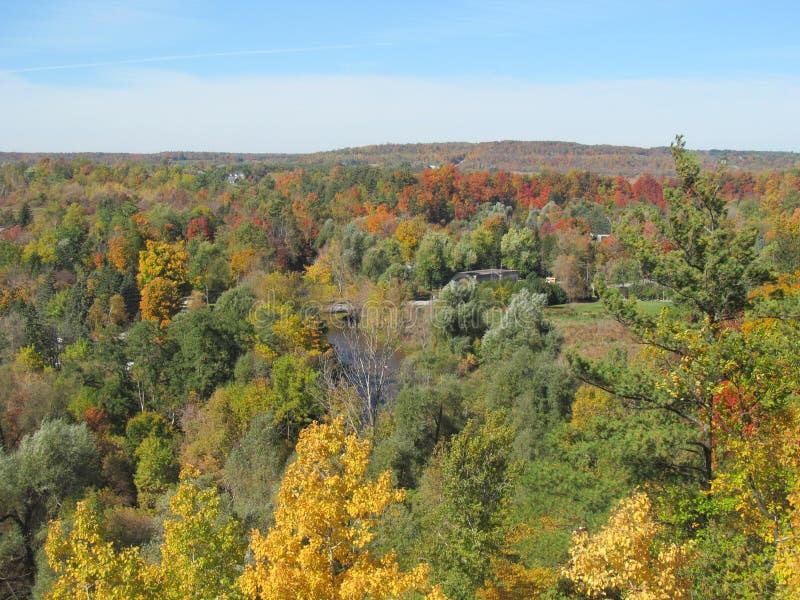 De scène van de de Herfstprovincieplaats van dalingsbladeren stock afbeeldingen