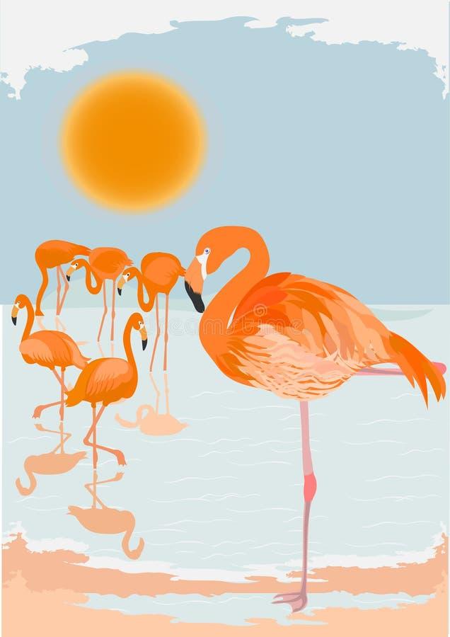 De scène van de flamingo vector illustratie