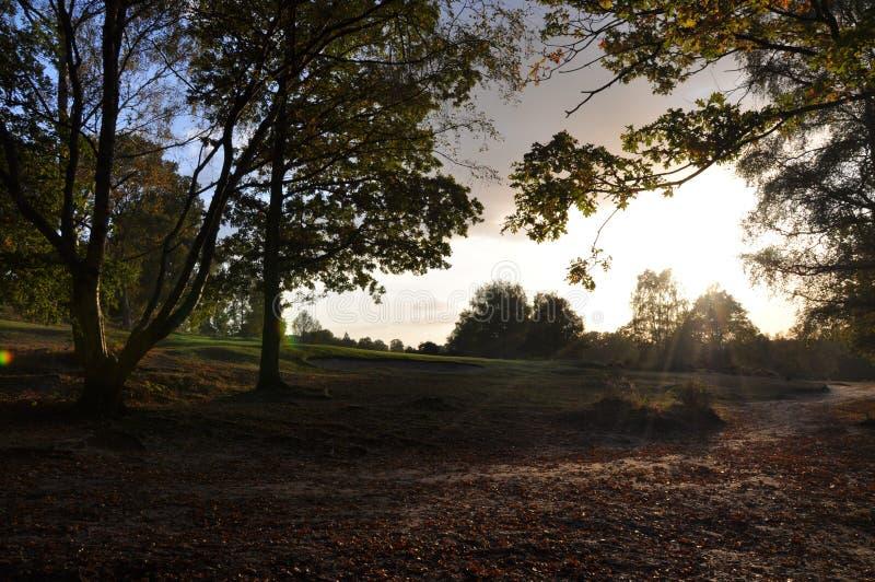 De scène van de herfst stock afbeelding