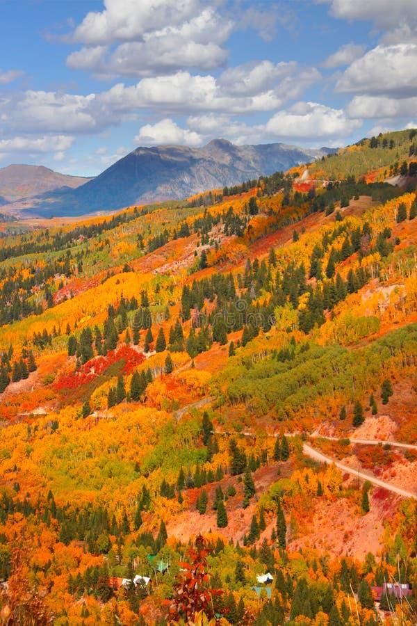 De scène van de herfst in Colorado stock foto's