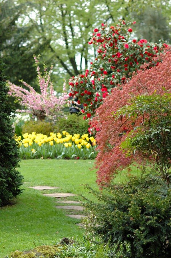 De scène van de tuin stock fotografie