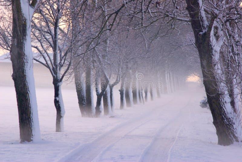 De Scène van de winter in Park stock fotografie