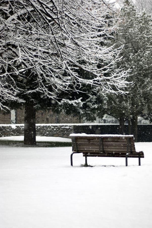 De scène van de winter - sneeuwval in het park royalty-vrije stock foto's