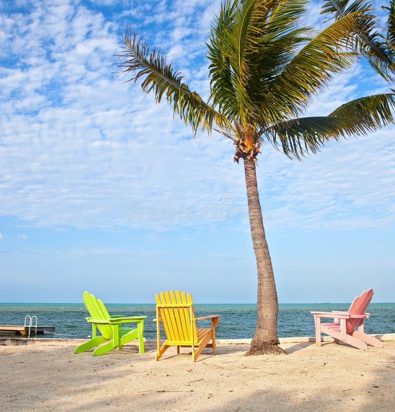 De scène van het de zomerstrand met palmen en zitkamerstoelen royalty-vrije stock foto