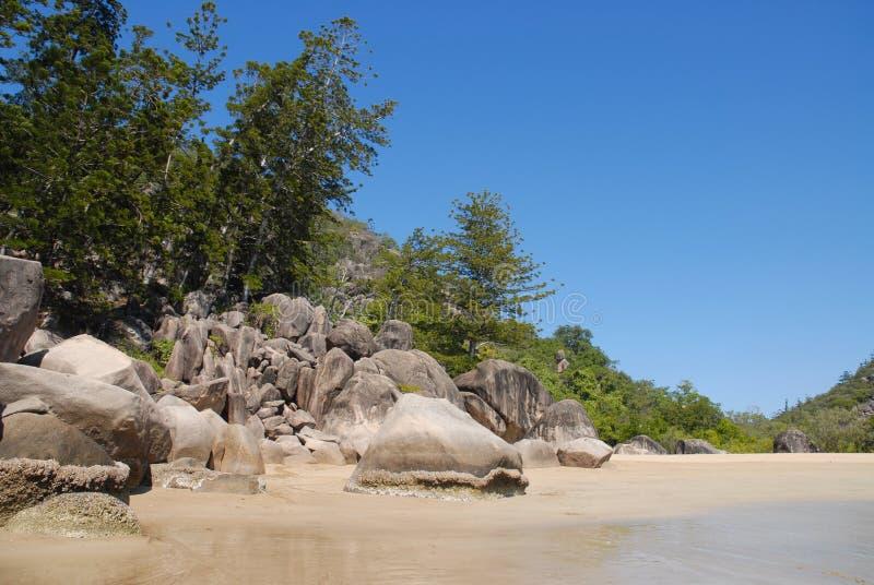 De scène van het eilandstrand op het Grote Barrièrerif, Australië stock afbeeldingen