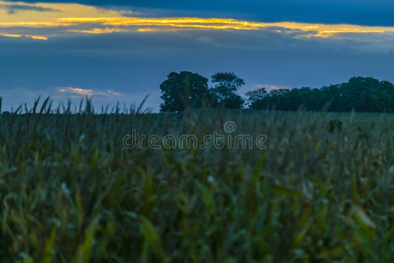 De Scène van de zonsondergangweide, San Jose, Uruguay royalty-vrije stock foto