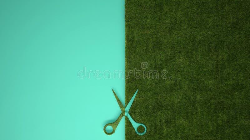 De schaar die groen gras op pastelkleurturkoois snijden kleurde achtergrond met exemplaarruimte, het modelconcept van het ecologi royalty-vrije stock afbeeldingen