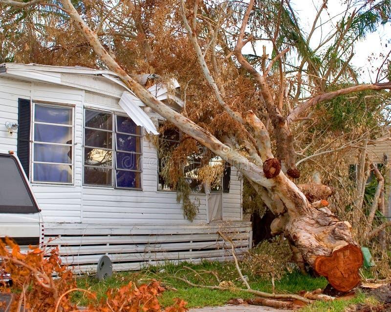 De Schade van de orkaan
