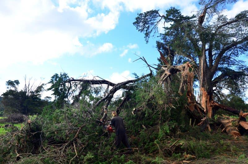 De Schade van het hoge Windonweer stock foto's