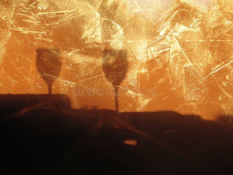 De Schaduwen van het Glas van de wijn stock afbeelding