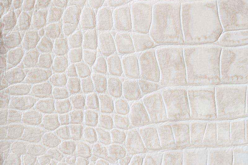 De schalen macro exotische die achtergrond van de manierroom, onder de huid van een reptiel, krokodil in reliëf wordt gemaakt Tex stock foto