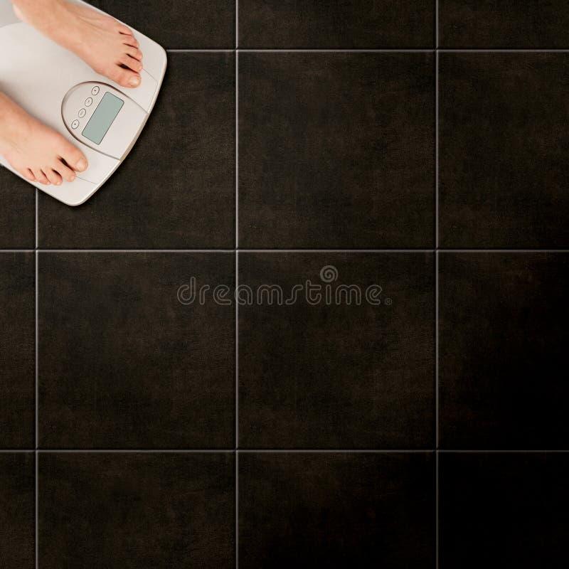 De schalen van de vloer royalty-vrije stock afbeelding