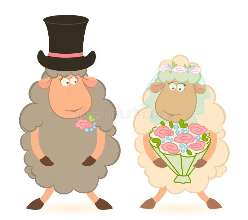 De schapenbruidegom en bruid van het beeldverhaal royalty-vrije illustratie