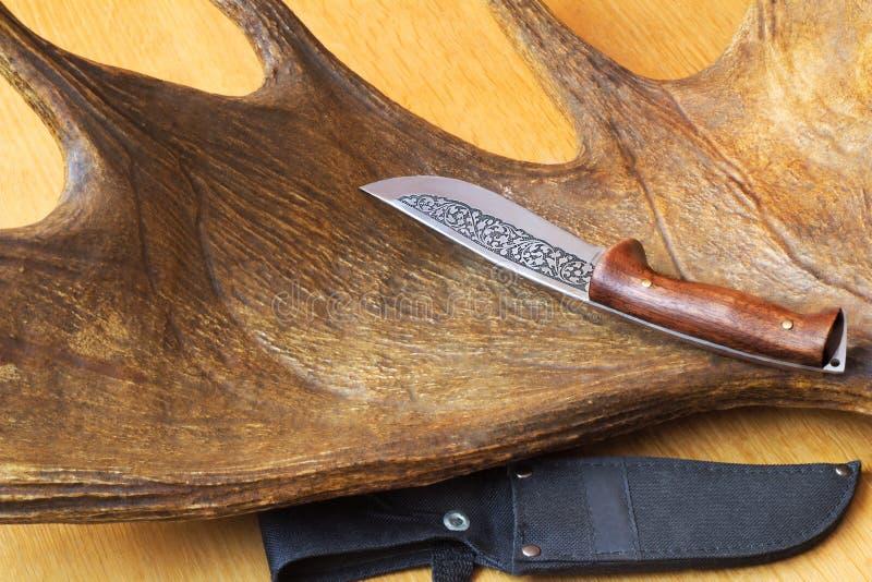 De schede van het de jachtmes en een trofeejager - grote elandenhoorn. royalty-vrije stock afbeelding