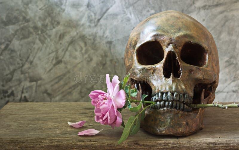 De schedel met nam toe stock foto