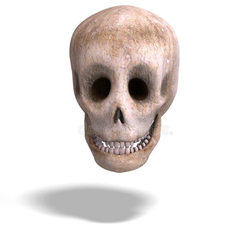 De schedel van Toon let op u stock illustratie