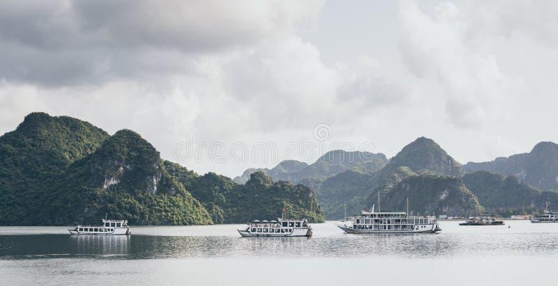 De schepen die van de toeristencruise onder kalksteenbergen varen in Halong-Baai, Vietnam stock foto