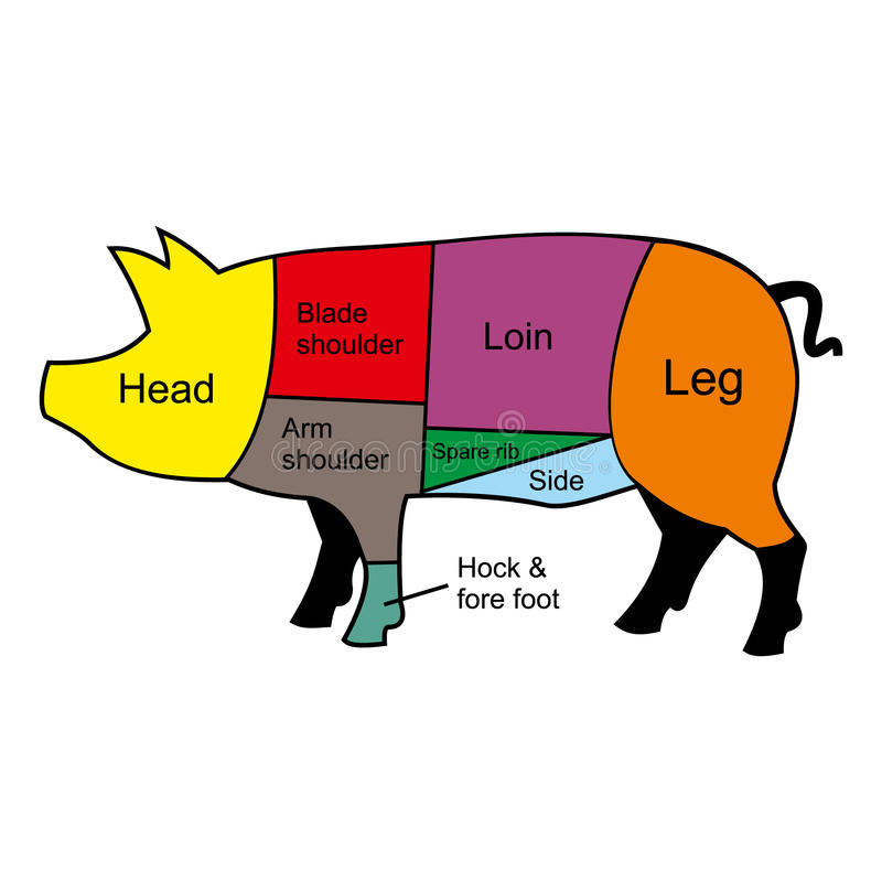 De scherpe grafiek van het varken stock illustratie