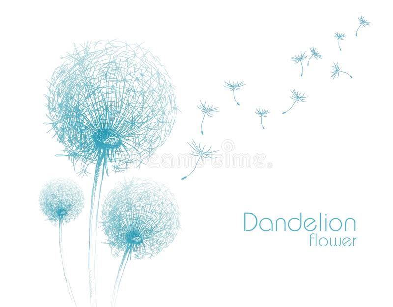 De schets van de bloempaardebloem vector illustratie