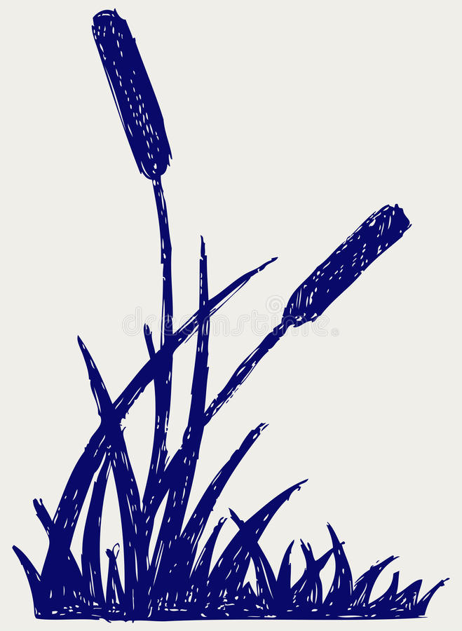 De schets van het moeras stock illustratie