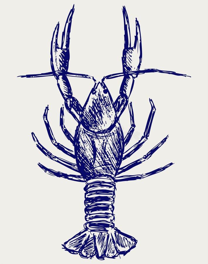 De schets van rivierkreeften royalty-vrije illustratie