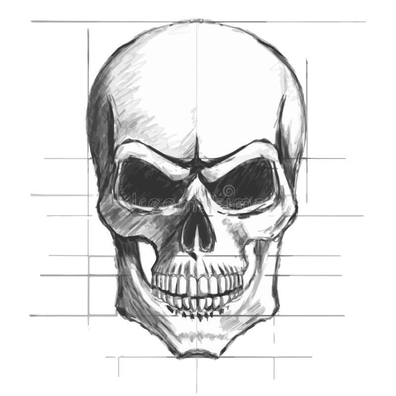 De schetsvector van het schedelpotlood royalty-vrije illustratie