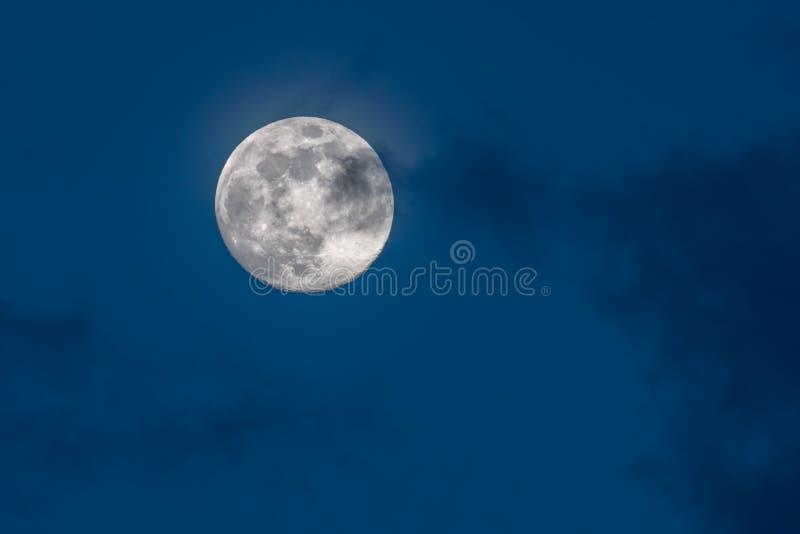 De schitterende volle maan in een donkerblauwe nachthemel wordt behandeld door zachte wispy donkere wolken stock fotografie