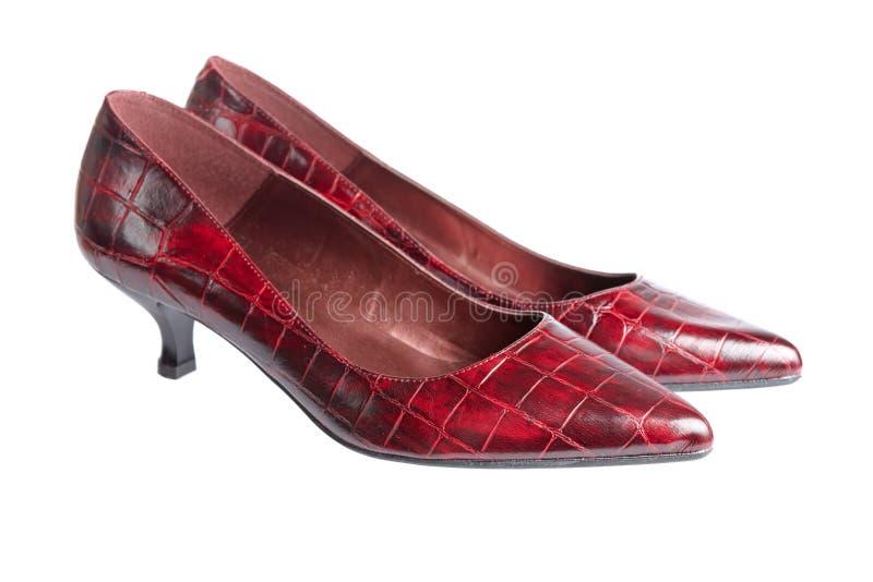 De schoenen van de dame royalty-vrije stock fotografie