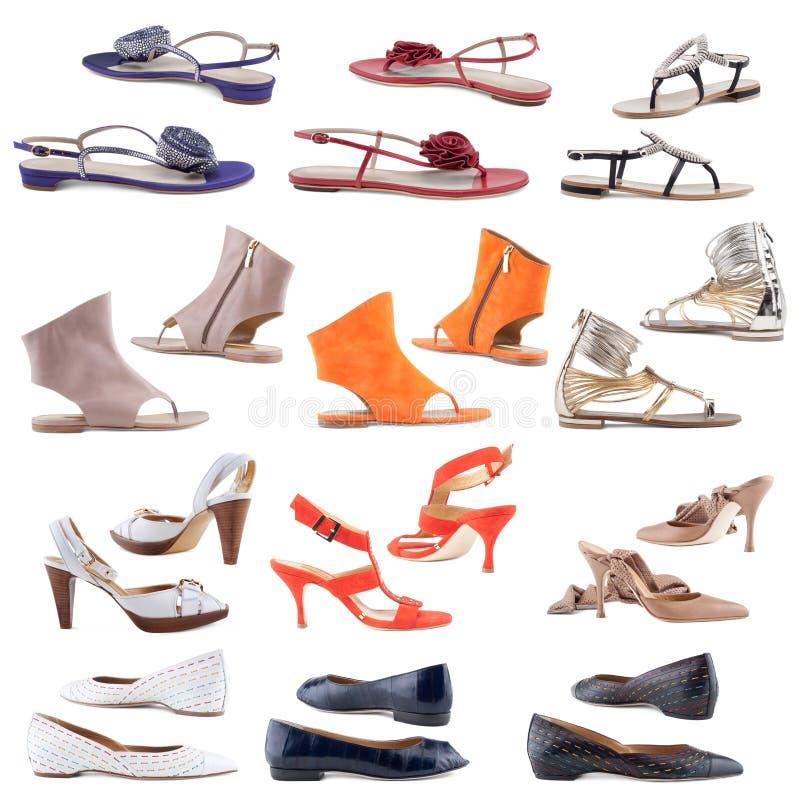 De schoenen van vrouwen op een witte achtergrond. stock foto